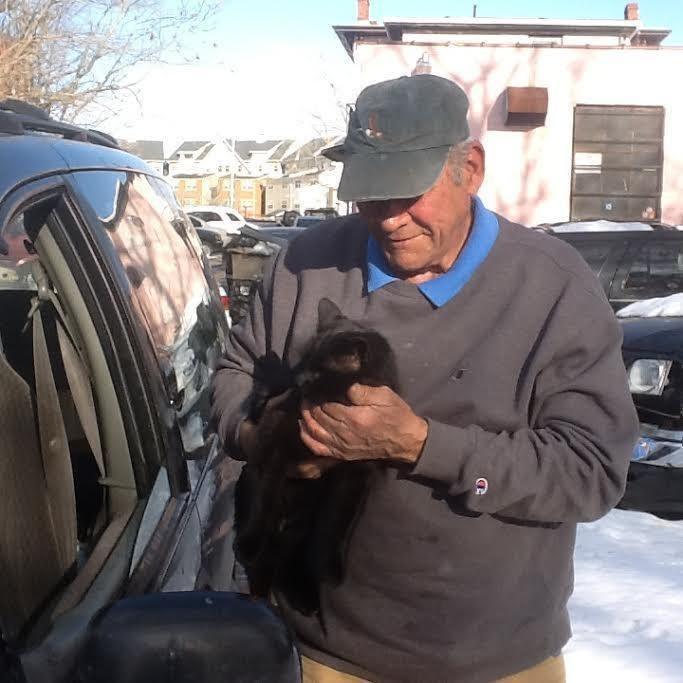 γάτες Άνδρας έχει περάσει πάνω από 20 χρόνια φροντίζοντας αδέσποτες γάτες αδέσποτες γάτες 20 χρόνια φροντίζοντας αδέσποτες γάτες