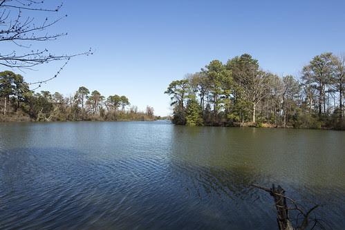 Lake Whitehurst by bahayla