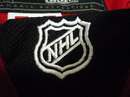 NHL 1 fake