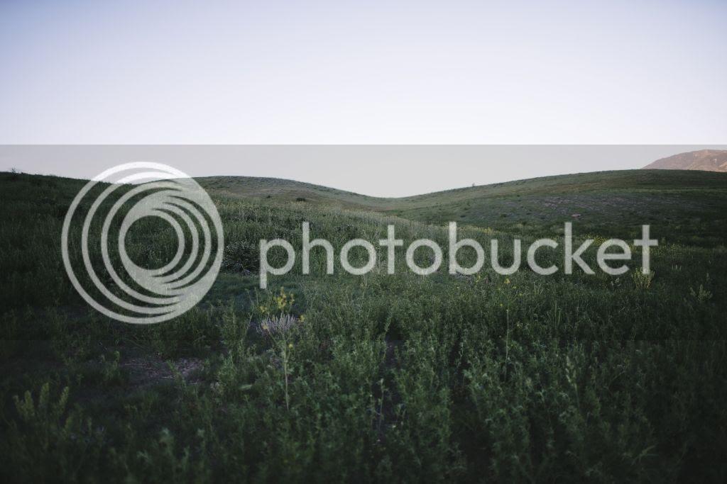 photo BMP_0496.jpg