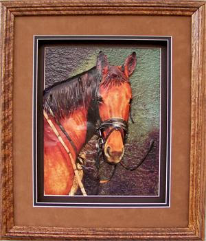 Oak Shadow Box Frame 750 Wheat Size 12x14 For 8x10 C0003