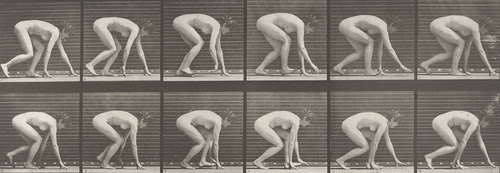Woman Walking on Hands and Feet: Plate 183 fromAnimal Locomotion (1887) Eadweard J. Muybridge (American, born England. 1830–1904) 1884-86. Collotype MoMA