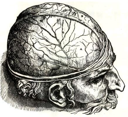 cerebro e mente