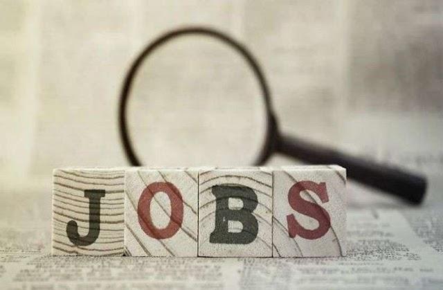 Govt Jobs: क्लीनर, कुक और ड्राइवर के रिक्त पदों पर निकली बंपर वैकेंसी, फटाफट करें अप्लाई