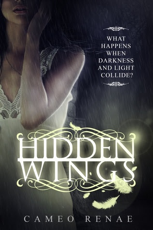 Hidden Wings (Hidden Wings, #1)