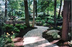 Garden Ideas For Wooded Areas Native Garden Design