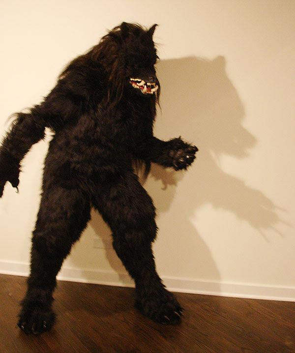 bear shadow
