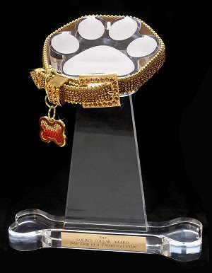 GCA Official Trophy Photo_Website