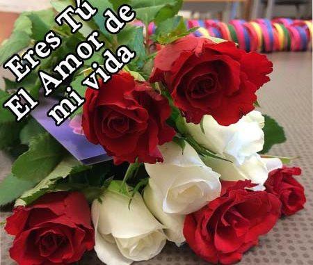 Rosas De Amor Bonitas Rosas De Amor
