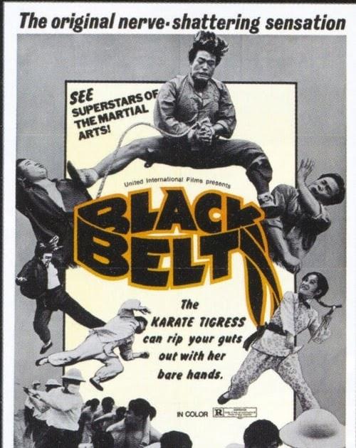 Ver Película El Black Belt 1973 En Español