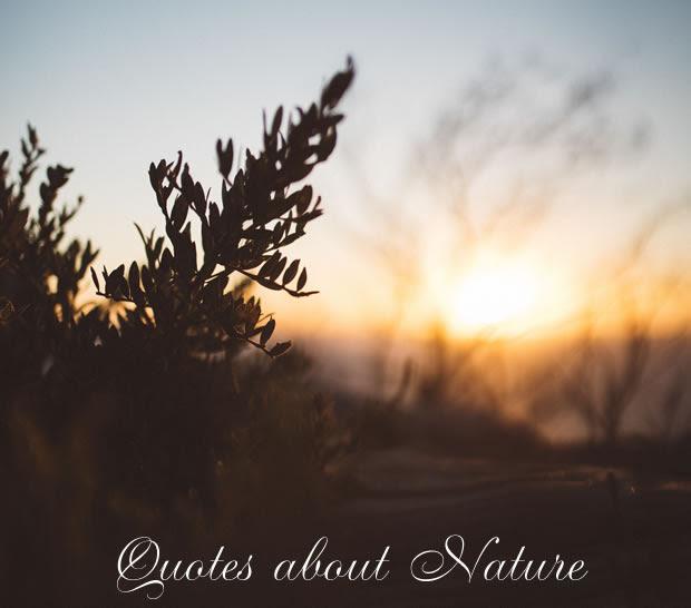 Nature Quotes Litquotes