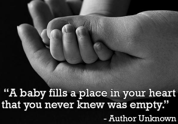 50 Best Quotes About Pregnancy Pregnancy Related