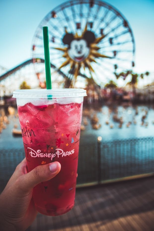 Foods to eat at Disneyland