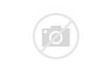 Protein Diet In Hindi
