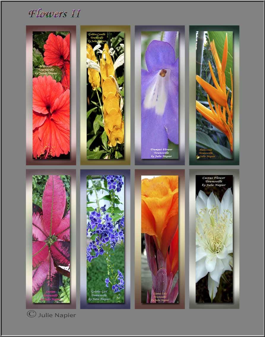 Flowers II