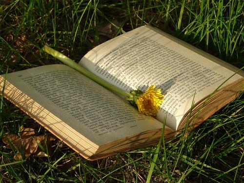 Fiesta del Libro