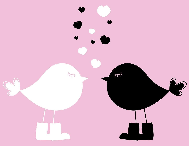2 Birds In Love Dry Erase & Chalkboard Vinyl Wall Art Decals