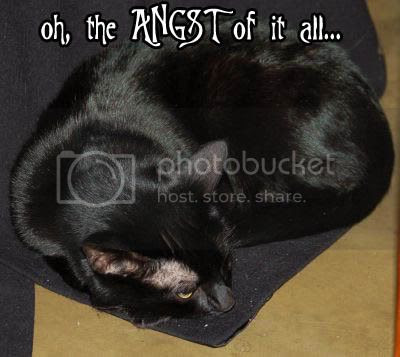 the ANGST~ Pictures, Images and Photos