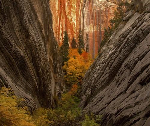 Canyon Convergence por KNikolaev