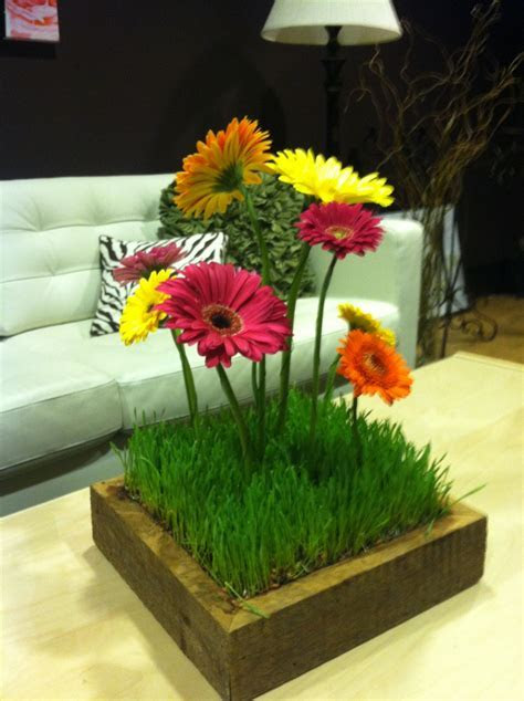 Gerbera Daisy and Wheat Grass centerpiece in a Barn Box
