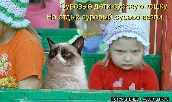 Котоматрица: Суровые дети суровую кошку На отдых суровый сурово везли...