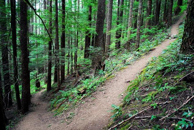 STEEP!!! - Hunchback Mountain - Mt. Hood National Forest