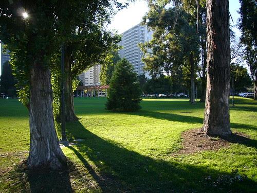 Green near the Embarcadero