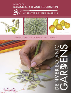 Summer/Fall Botanical Illustration course catalog