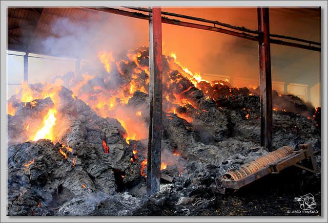 6 Fuego en Briviesca