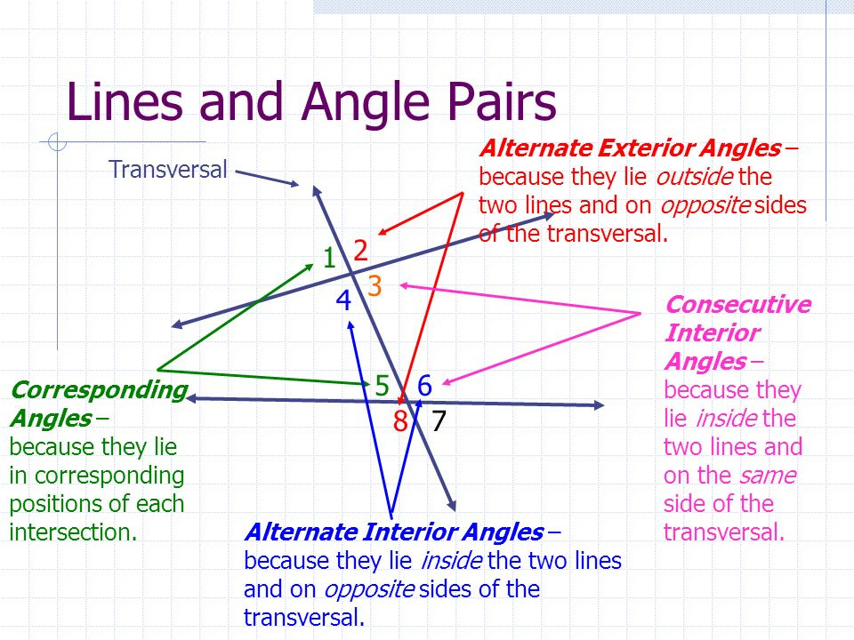 Lines+and+Angle+Pairs+Alternate+Exterior+Angles+%E2%80%93+because+they+lie+outside+the+two+lines+and+on+opposite+sides+of+the+transversal