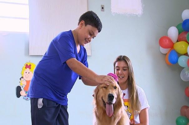 Terapia com animais (Foto: Reprodução/TV TEM)