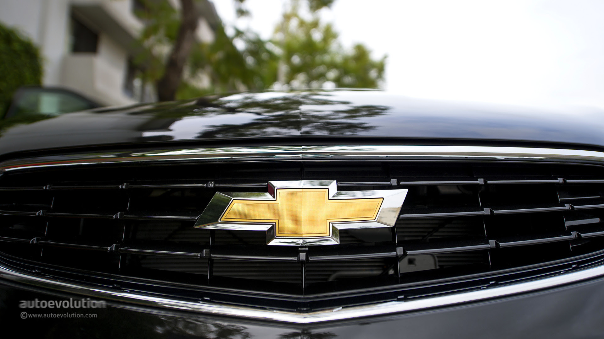 Chevy Bowtie Wallpaper 59  images