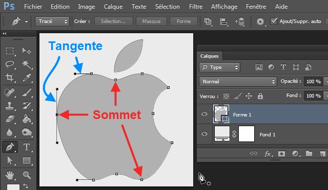 Bienvenue Dans Photoshop Cc Lutilisation Des Outils Vectoriels Introduction
