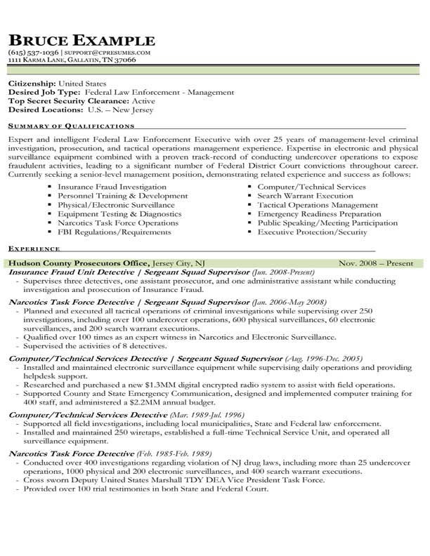 sample resume law enforcement