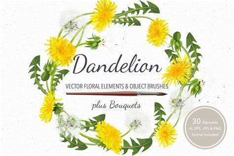 Vector object brushes.Dandelion. ~ Illustrator Add Ons