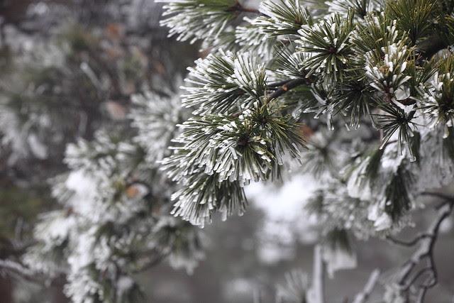 2012-01-27-12-45-59