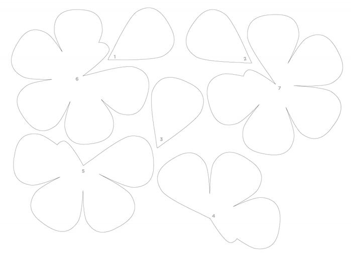Розы из бумаги. Готовые шаблоны для распечатки (7) (700x506, 64Kb)