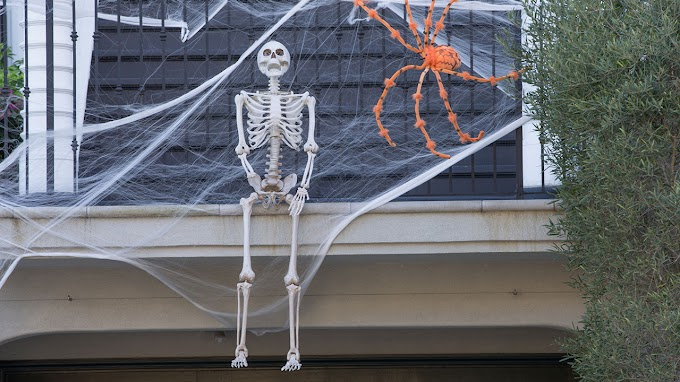 TREND ESSENCE: Home Depot's giant Halloween skeleton sells out online: 'I love him'