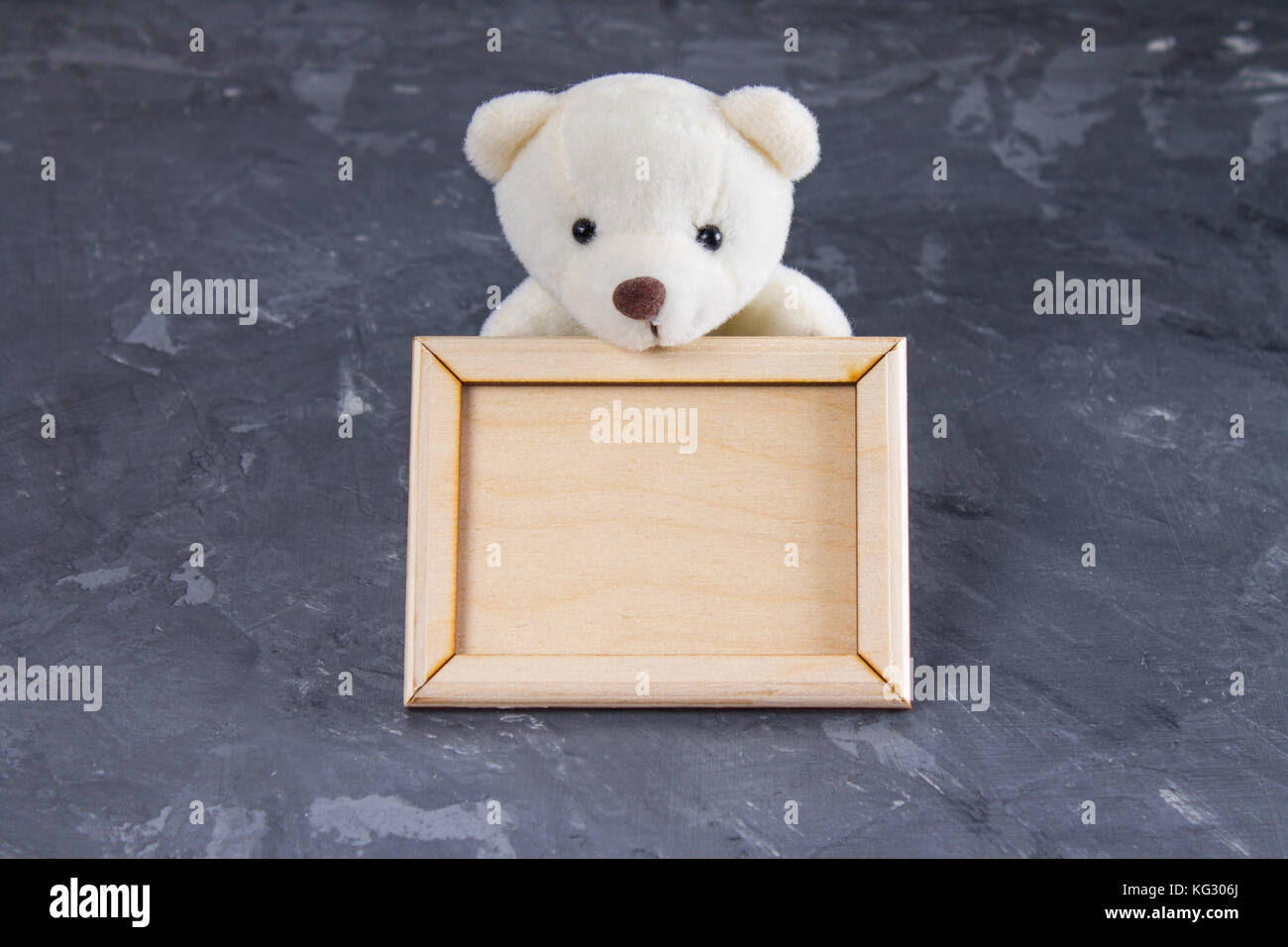 White Teddy Bear Holding Empty Wooden Frame Gray Background Stock