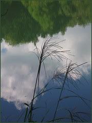 11 lake in silence