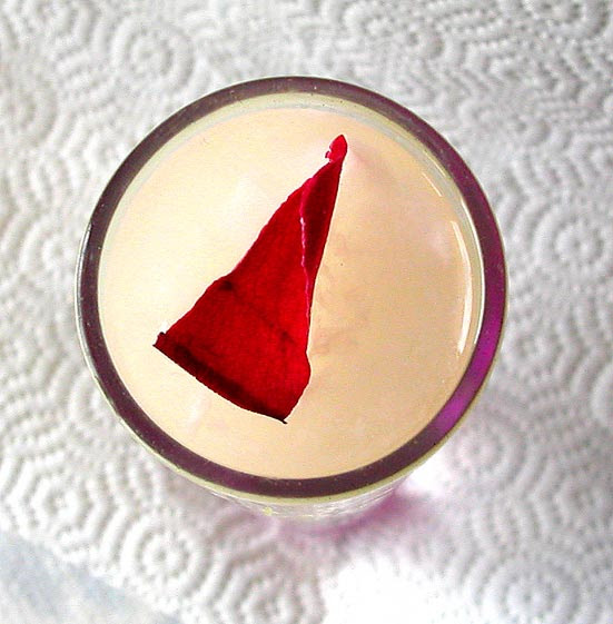 lychee tapioca jelly