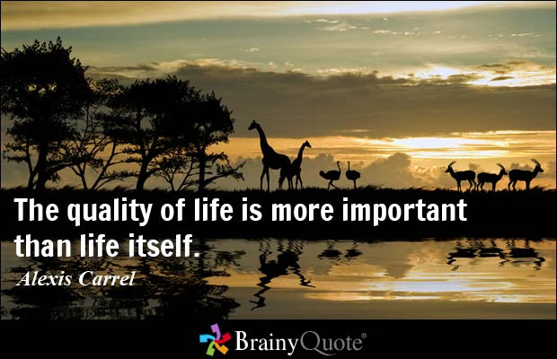 Quotes About Quality Life 296 Quotes