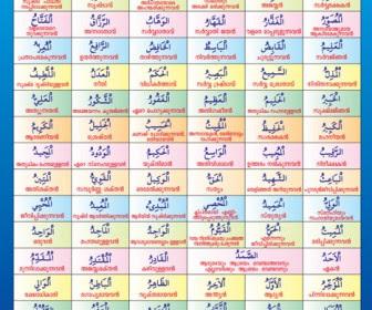 Arab Shapes Vector -