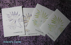 Three Fern Cards 8-12-09