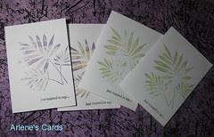 Three Fern Cards 8-12-09