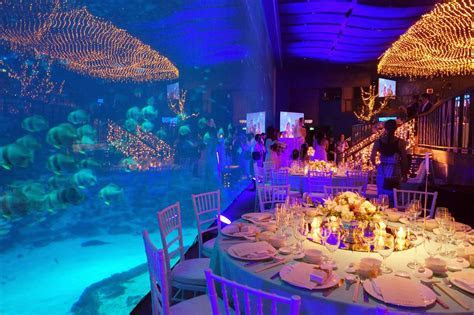 taykexin: Why you should hold your Wedding @ the SEA