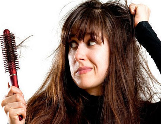 5 Best foods That Prevent Hair Fall