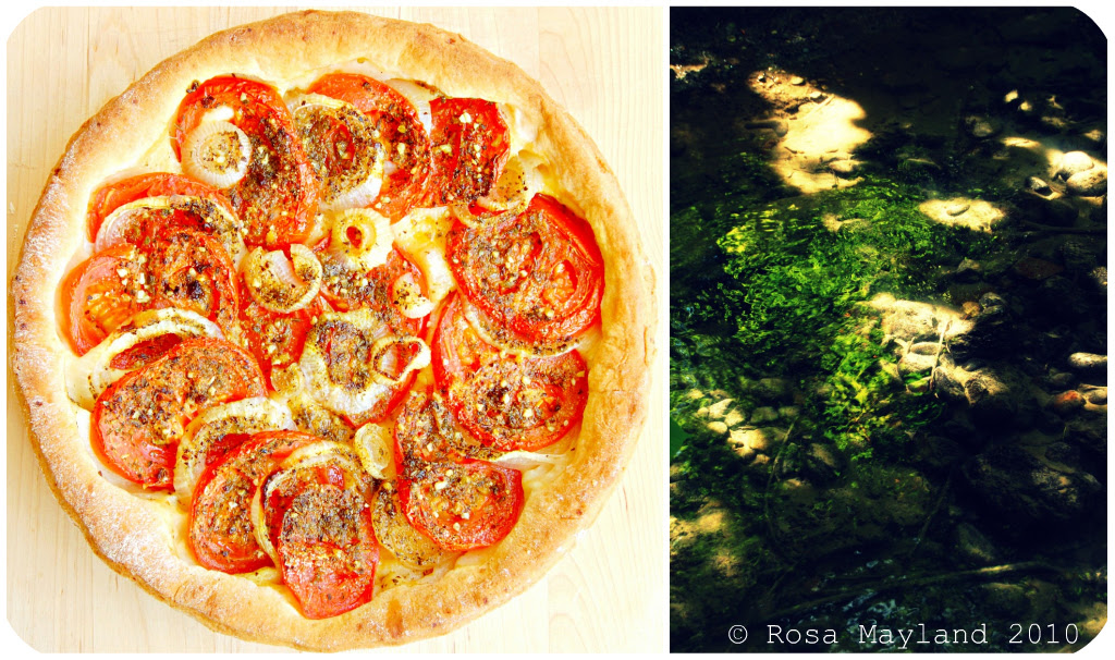 Tomato Tart Picnik-Collage 3 bis