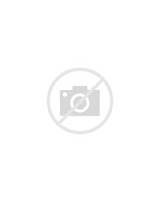 Pictures of Sales Receipt Template