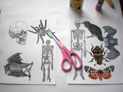 cut out printed images